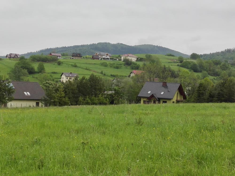 widokowa działka, Brzuśnik